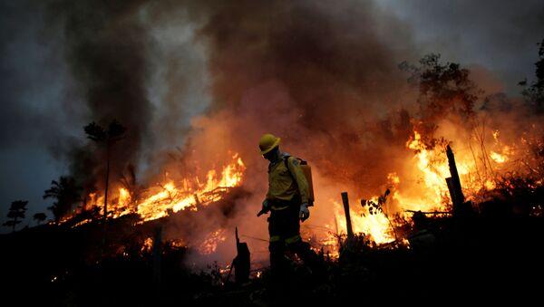 La forêt amazonienne en proie aux flammes   - Sputnik France