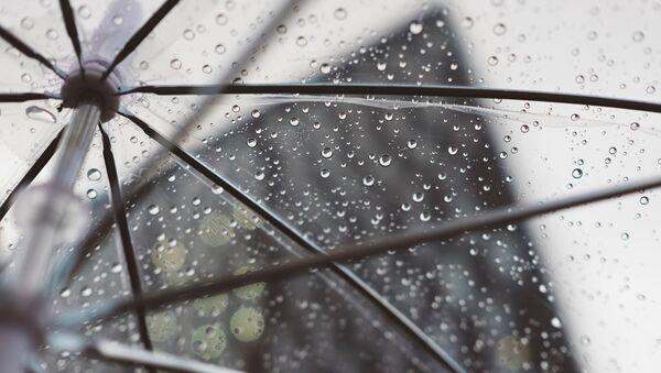 parapluie - Sputnik France
