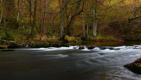 Une rivière  - Sputnik France