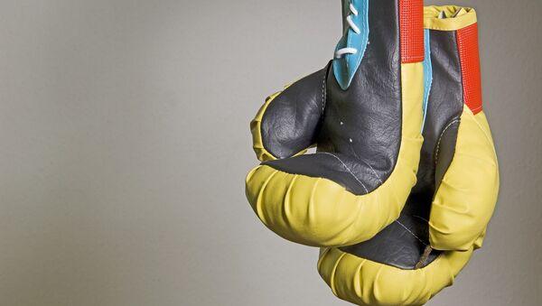 Des gants de boxe - Sputnik France