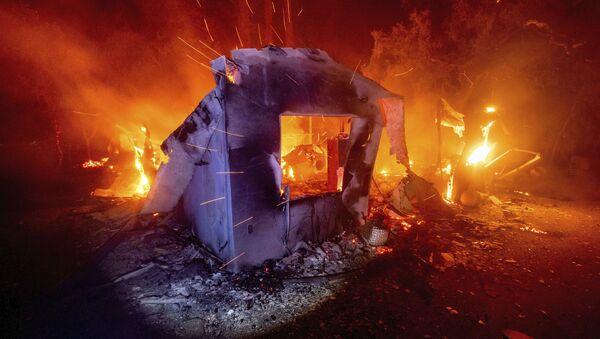 Tapis de flammes: la Californie en proie à 367 feux de forêt   - Sputnik France