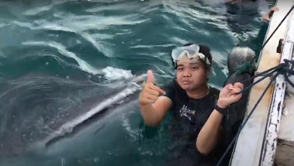 A este tiburón le encantan los traseros - Sputnik France