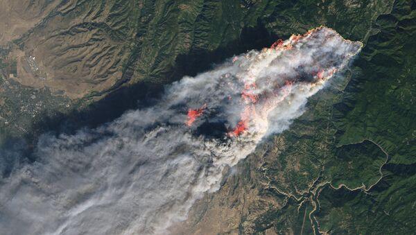 Images satellites de feux de forêt   - Sputnik France