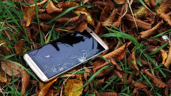 Téléphone dans l'herbe  - Sputnik France