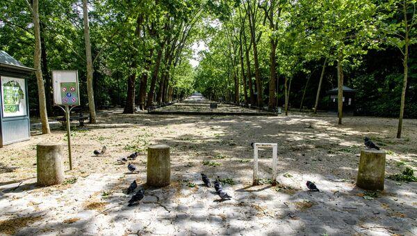 Jardin du Luxembourg. Paris après le confinement - Sputnik France