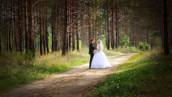 Mariage. Couple. Bois. Imafe d'illustration - Sputnik France