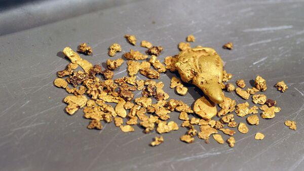 Extraction d'or - Sputnik France