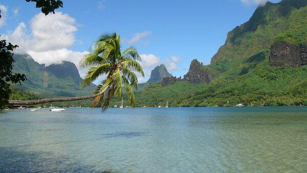 Polynésie française. Vue de la baie de Cook sur Moorea - Sputnik France