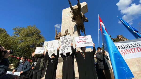 Une manifestation anti-Macron à Istanbul, le 1er novembre - Sputnik France