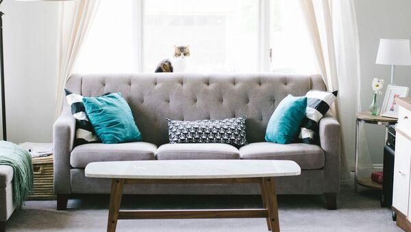 Des meubles - Sputnik France