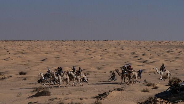 Le désert du Sahara, aux abords de la localité de Douz (Tunisie) - Sputnik France