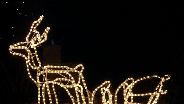 rennes de Noël - Sputnik France