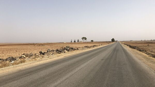 Gouvernorat de Hama, Syrie - Sputnik France