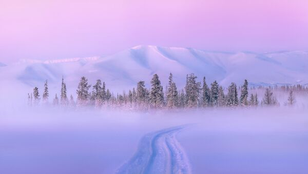 Un hiver aux couleurs surprenantes: la nature russe dans toutes les nuances de l'arc-en-ciel   - Sputnik France