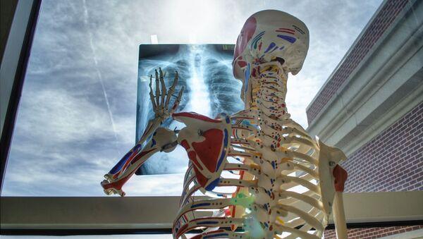 squelette vertèbres - Sputnik France