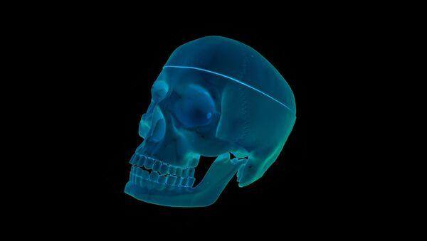 Radiographie (image d'illustration) - Sputnik France