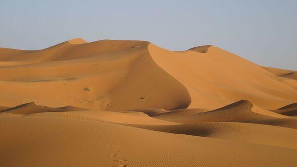 Le désert du Sahara (image d'illustration) - Sputnik France