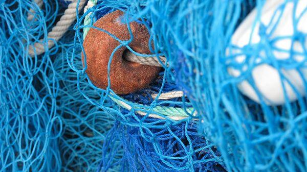 Filet de pêche - Sputnik France