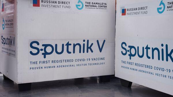 Un lot du vaccin russe Spoutnik V exporté à l'étranger (archive photo) - Sputnik France