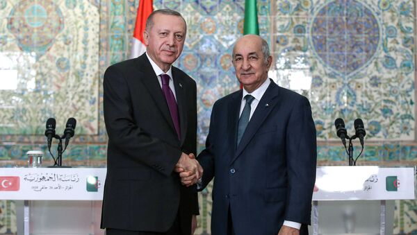 Rencontre entre le Président Tebboune et le Président Erdogan  - Sputnik France
