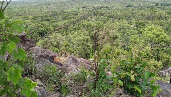 Une vue panoramique du parc national de la Comoé - Sputnik France