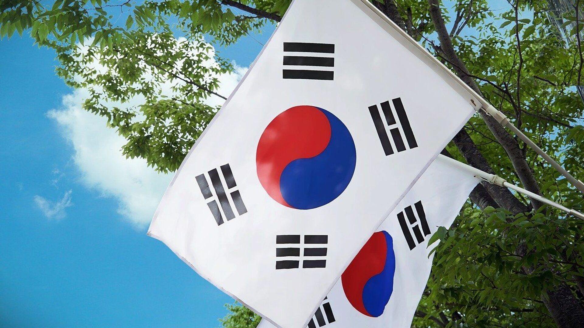 Drapeaux de la Corée du Sud - Sputnik France, 1920, 13.08.2021