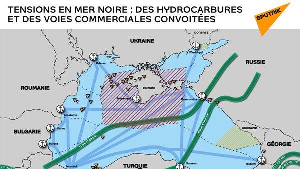 Tensions en Mer noire : des hydrocarbures et des voies commerciales convoitées  - Sputnik France
