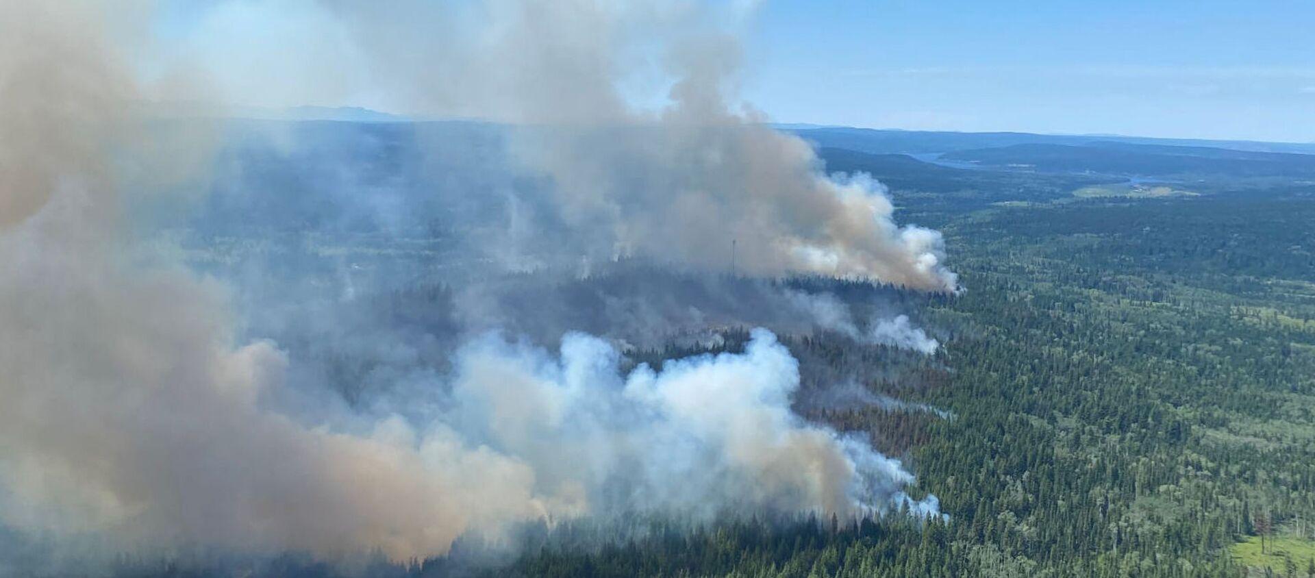 Un feu de forêt dans la province canadienne de Colombie-Britannique, le 2 juillet 2021 - Sputnik France, 1920, 05.07.2021