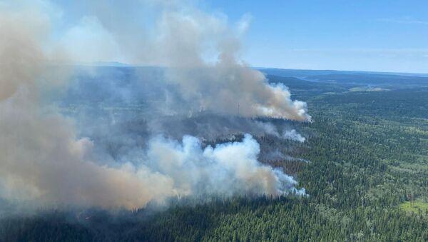 Un feu de forêts dans la province canadienne de Colombie-Britannique, le 2 juillet 2021 - Sputnik France