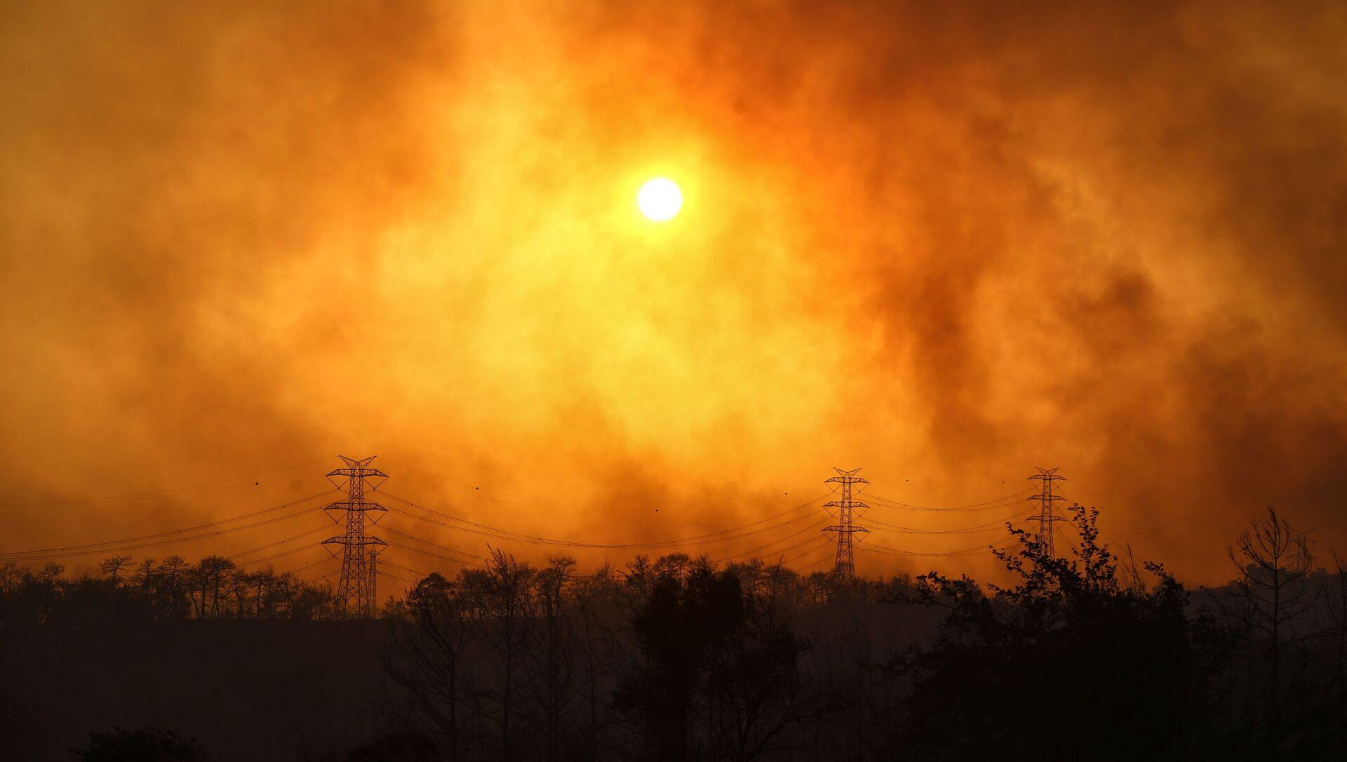 Un incendie de forêt près de Manavgat, en Turquie (archive photo) - Sputnik France, 1920, 04.08.2021
