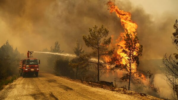 Incendies en Turquie - Sputnik France
