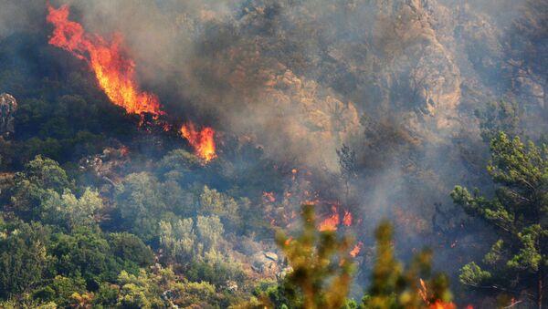 Les incendies en Turquie - Sputnik France