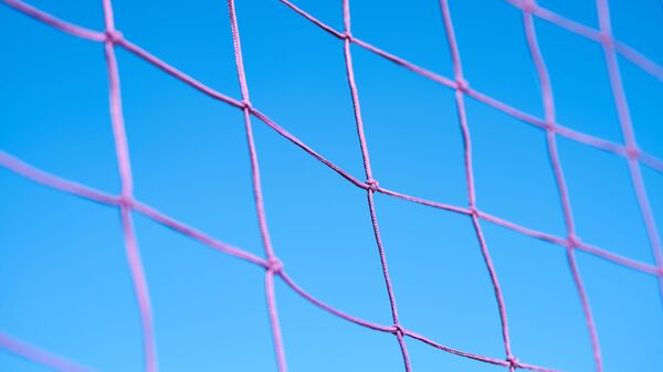 Filet de volleyball  - Sputnik France