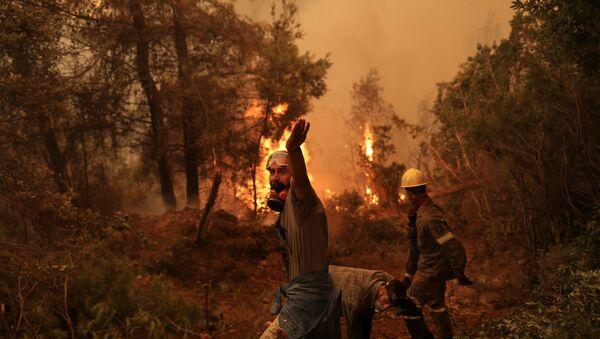 Les incendies en cours sur l'île d'Eubée, en Grèce - Sputnik France