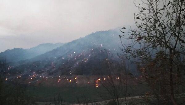Tizi Ouzou, la forêt brûle sur les flancs du barrage de Taksebt - Sputnik France