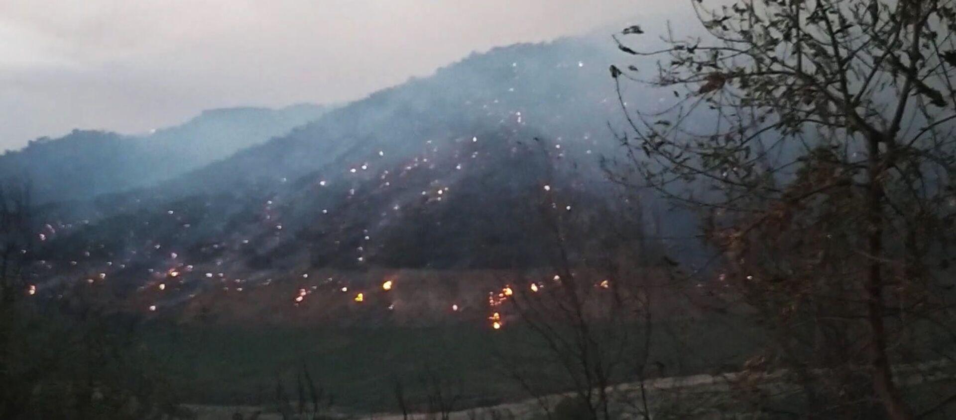Tizi Ouzou, la forêt brûle sur les flancs du barrage de Taksebt - Sputnik France, 1920, 11.08.2021