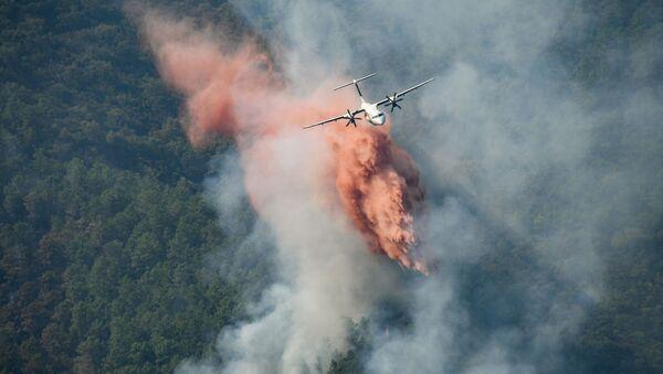 Des feux de forêts dans le Var, août 2021 - Sputnik France