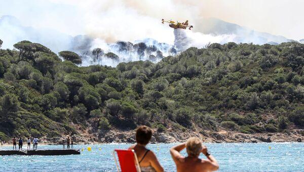 Un Canadair à Saint-Tropez, ville ravagée par des incendies de forêt, juillet 2017 - Sputnik France
