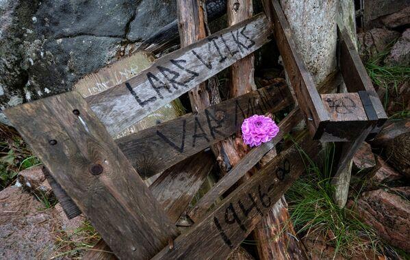 """L'histoire de Ladonia, d'une superficie d'à peine 1 km2, commence en 1980 lorsque l'artiste et sculpteur Lars Vilks installe deux sculptures abstraites, Nimis et Arks, dans la réserve de Kullaberg, dans le nord-ouest de la Skanie. Le 2 juin 1996, il déclare le territoire environnant """"État indépendant"""" de Ladonia.Sur la photo: une fleur sur la sculpture en bois Nimis, de Lars Vilks. - Sputnik France"""