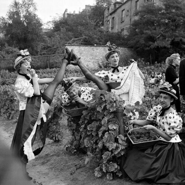 Le 6 octobre 1889, Joseph Oller et Charles Zidler ouvrent les portes de leur nouvelle entreprise: le Moulin Rouge. Une danse assez vulgaire, dont tout Paris se met bientôt à parler, est le clou du spectacle. Appelée cancan, cette danse est jusqu'à aujourd'hui la marque de fabrique du cabaret.Sur la photo: danseuses du Moulin Rouge pendant les vendanges à Montmartre, Paris, 1953. - Sputnik France
