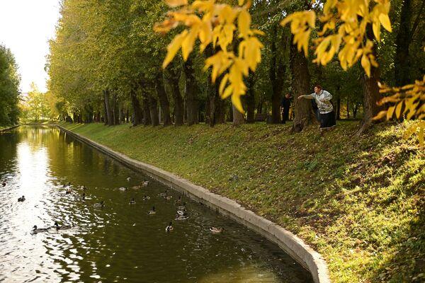 Un anticyclone venu de Scandinavie a apporté un temps clair et sec.Sur la photo: femme nourrissant des canards dans le parc Krasnaïa Presnia, à Moscou. - Sputnik France