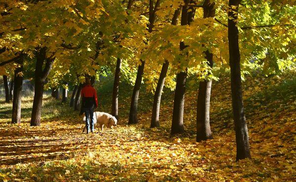 Une jeune femme promène son chien dans un square avenue Leninski, à Moscou. - Sputnik France