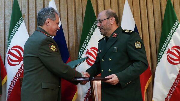 Ministre de la Défense de Russie Sergueï Choïgou en Iran - Sputnik France