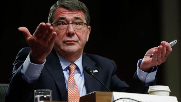 Ashton Carter, secrétaire américain à la Défense - Sputnik France