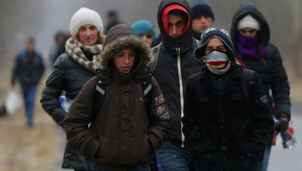 A group of Kosovars walk along a road after they crossed illegally the Hungarian-Serbian border near the village of Asotthalom February 6, 2015. - Sputnik France
