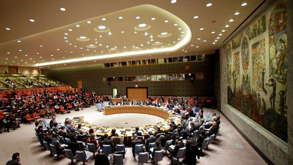 The UN Security Council - Sputnik France