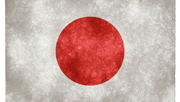 Japan Grunge Flag - Sputnik France