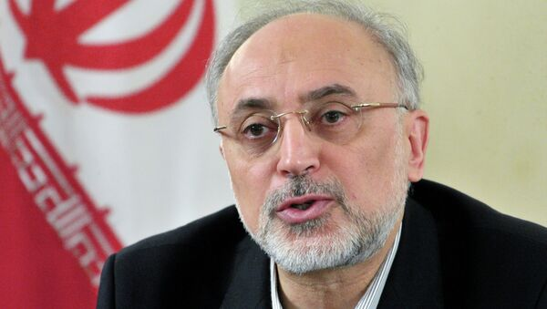Заседание Российско-Иранской комиссии по торгово-экономическому сотрудничеству в Москве - Sputnik France