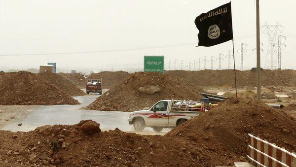 Islamic State militants - Sputnik France