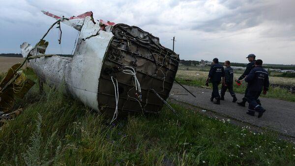 Crash du vol MH17 - Sputnik France